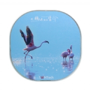 TWNT-WC1002YL Great Flamingo